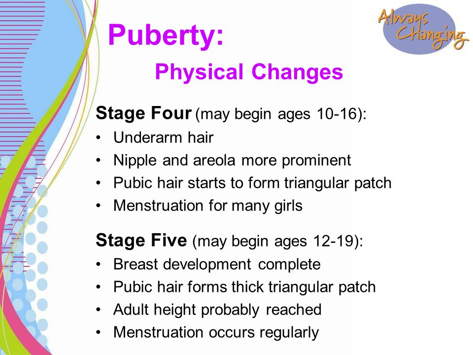 Stage Four (may begin ages 10-16): Underarm hair Nipple and areola more prominent Pubic hair starts to form triangular patch Menstruation for many girls Stage Five (may begin ages 12-19): Breast development complete Pubic hair forms thick triangular patch Adult height probably reached Menstruation occurs regularly Puberty: Physical Changes
