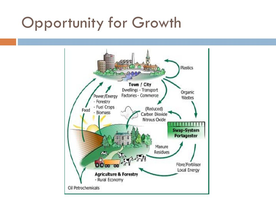 Opportunity for Growth