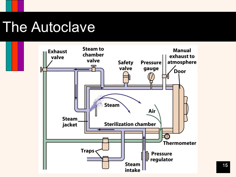 15 The Autoclave
