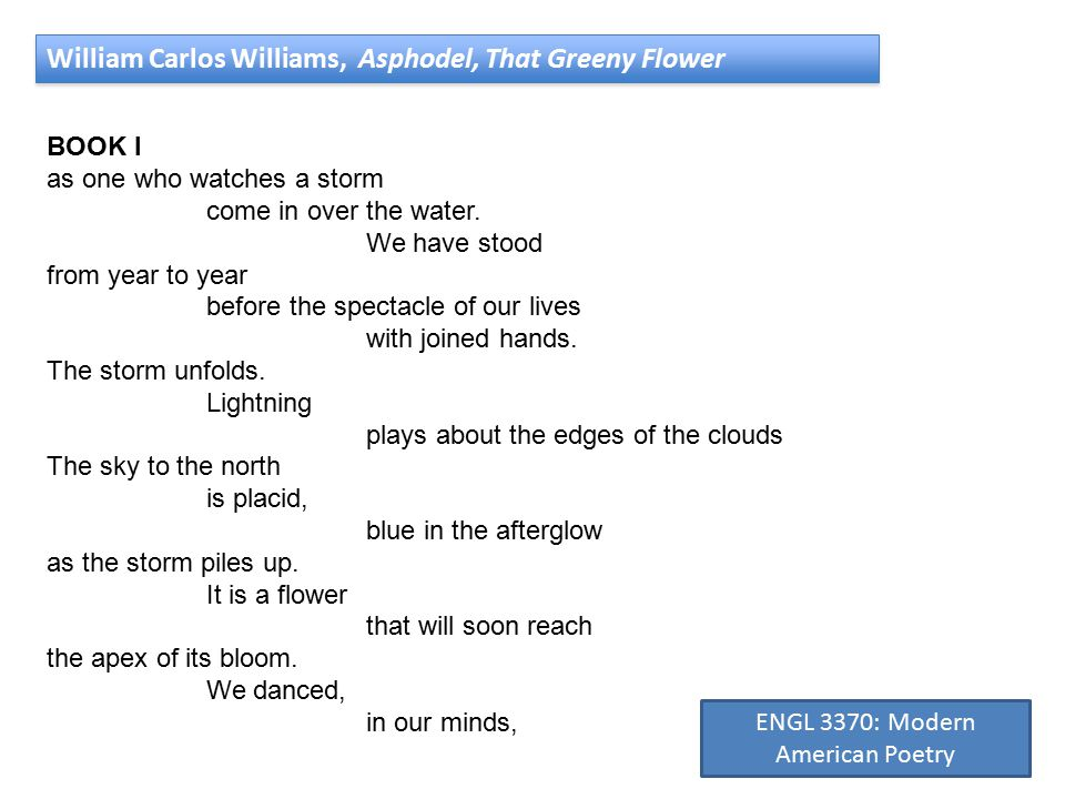 William Carlos Williams, Asphodel, That Greeny Flower BOOK I as one who watches a storm come in over the water.