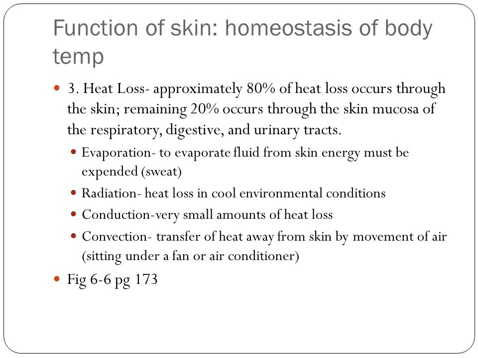 Function of skin: homeostasis of body temp 3.