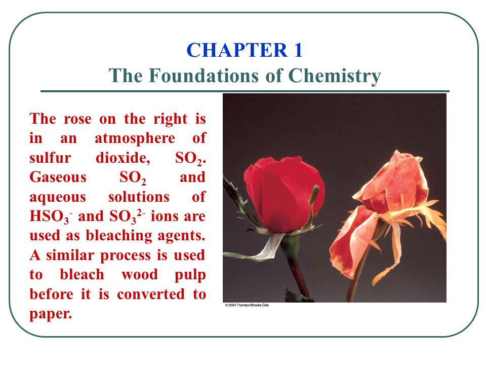 CHAPTER 1 The Foundations of Chemistry The rose on the right is in an atmosphere of sulfur dioxide, SO 2. Gaseous SO 2 and aqueous solutions of HSO 3