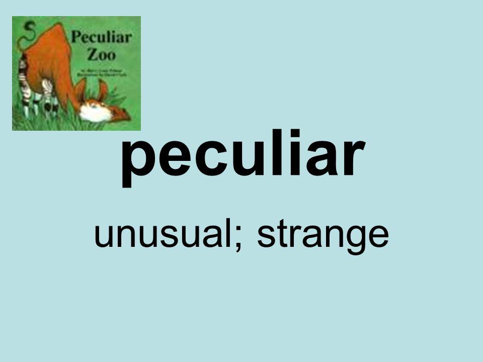 peculiar unusual; strange