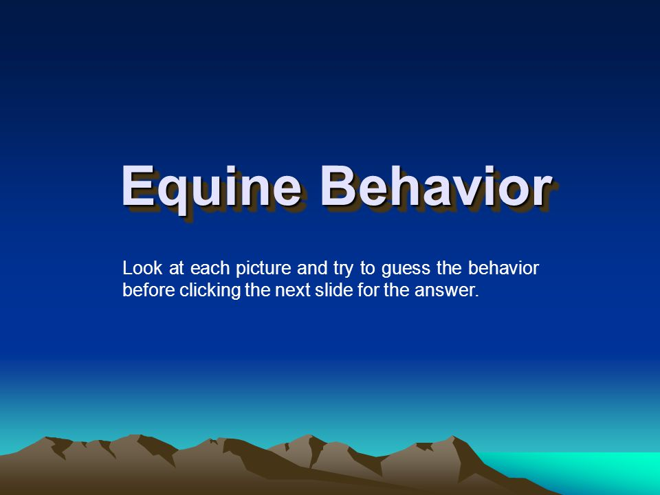 Reading Body Language For safety, it is important to stay tuned in to the horses you are working with and around.
