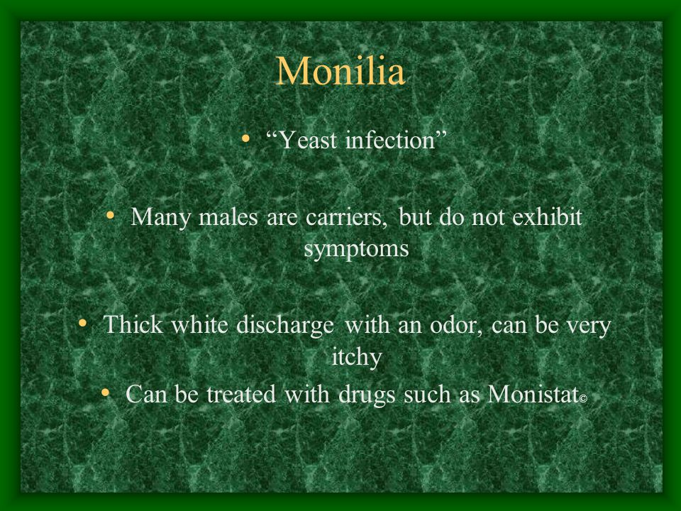 "Monilia ""Yeast infection"" Many males are carriers, but do not exhibit symptoms Thick white discharge with an odor, can be very itchy Can be treated wi"
