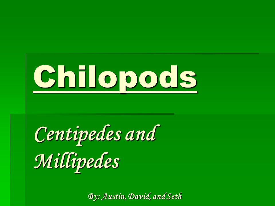 Chilopods Centipedes and Millipedes By: Austin, David, and Seth