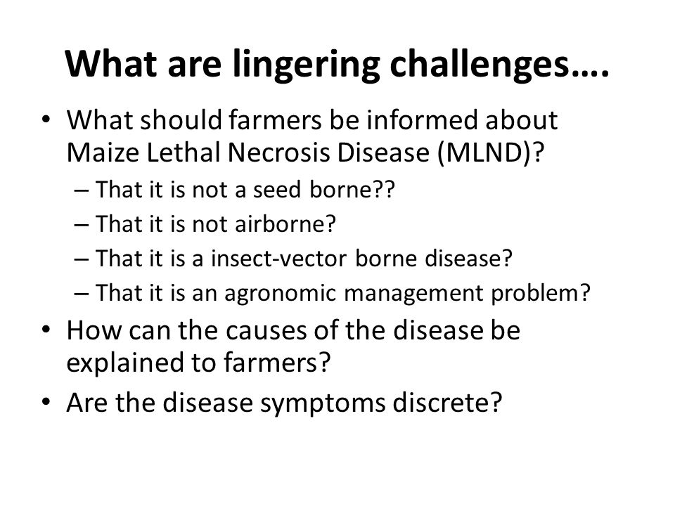 What are lingering challenges….The Maize Lethal Necrosis (MLN) disease has no cure so far??.
