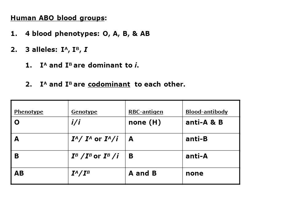 ABO inheritance is Mendelian: Possible parental genotypes for type O offspring: 1.i/i x i/i 2.I A /i x i/i 3.I A /i x I A /i 4.I B /i x i/i 5.I B /i x I B /i 6.I A /i x I B /i