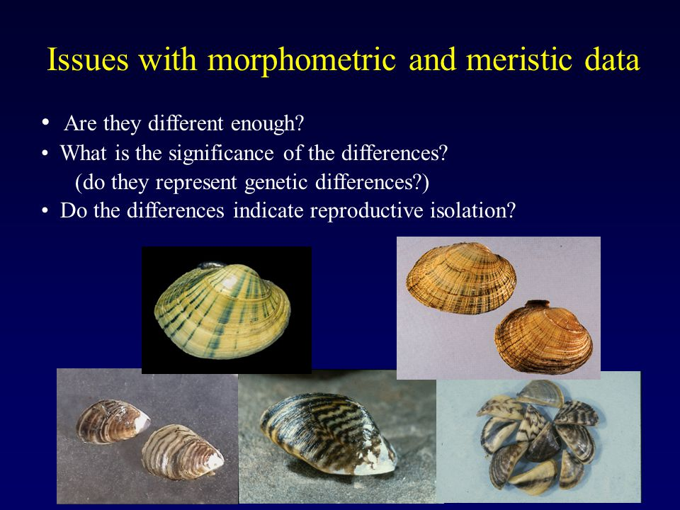 Issues with morphometric and meristic data Are they different enough.