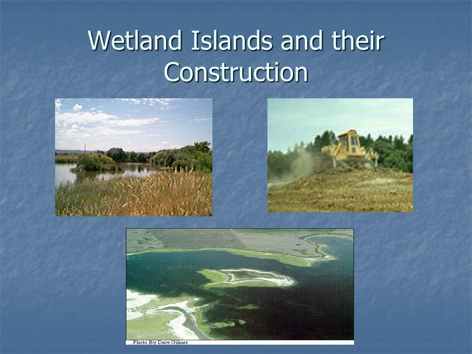 Wetland Islands and their Construction