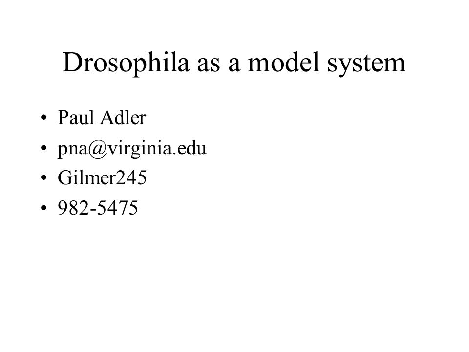 Drosophila as a model system Paul Adler pna@virginia.edu Gilmer245 982-5475
