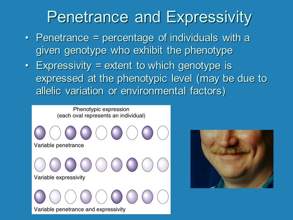 Penetrance and Expressivity PenetrancePenetrance = percentage of individuals with a given genotype who exhibit the phenotype ExpressivityExpressivity