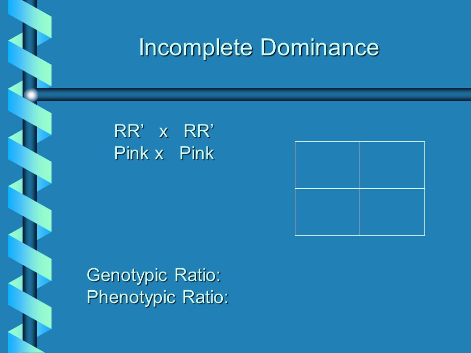 Incomplete Dominance RR' x RR' Pink x Pink Genotypic Ratio: Phenotypic Ratio: