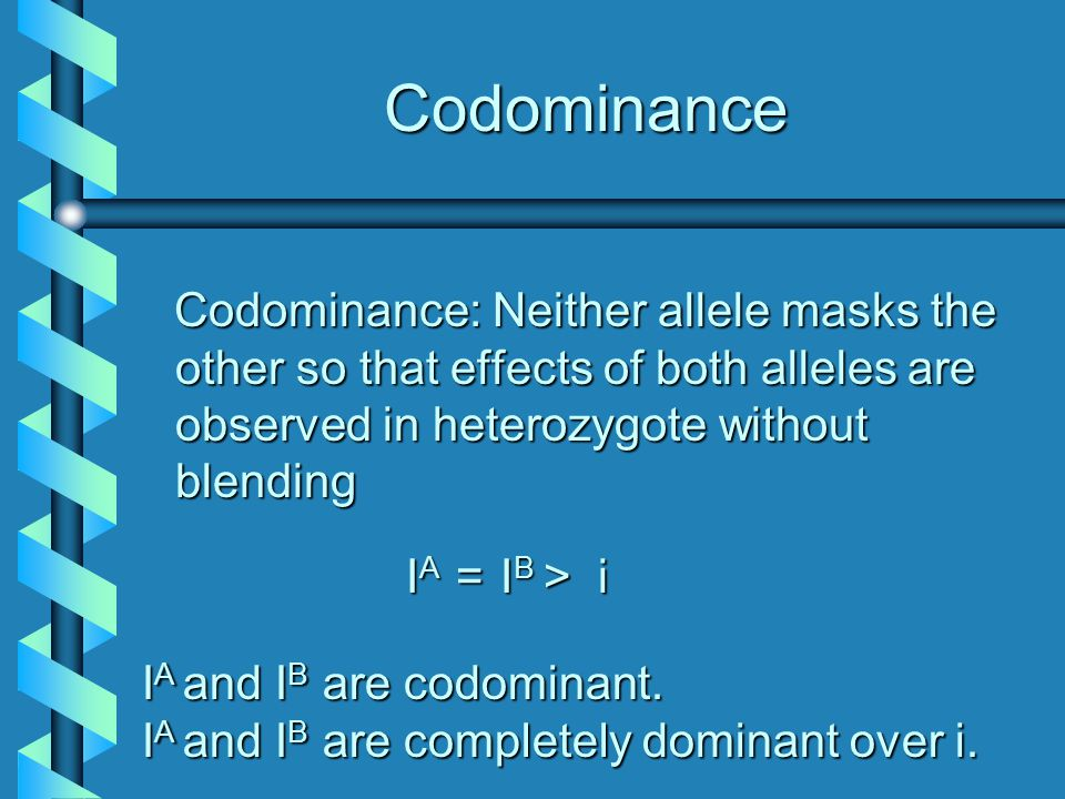 Codominance Codominance: Neither allele masks the other so that effects of both alleles are observed in heterozygote without blending Codominance: Neither allele masks the other so that effects of both alleles are observed in heterozygote without blending I A = I B > i I A = I B > i I A I A and IB IB IB IB are codominant.