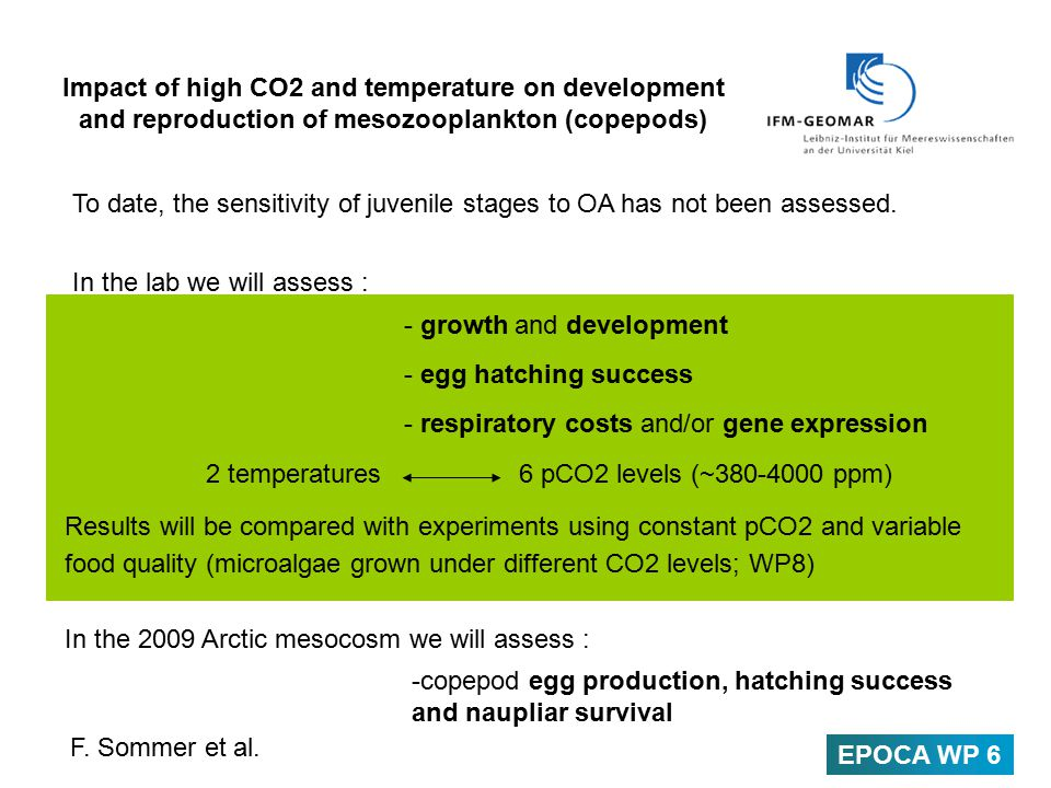 Impact of high CO2 and temperature on development and reproduction of mesozooplankton (copepods) To date, the sensitivity of juvenile stages to OA has