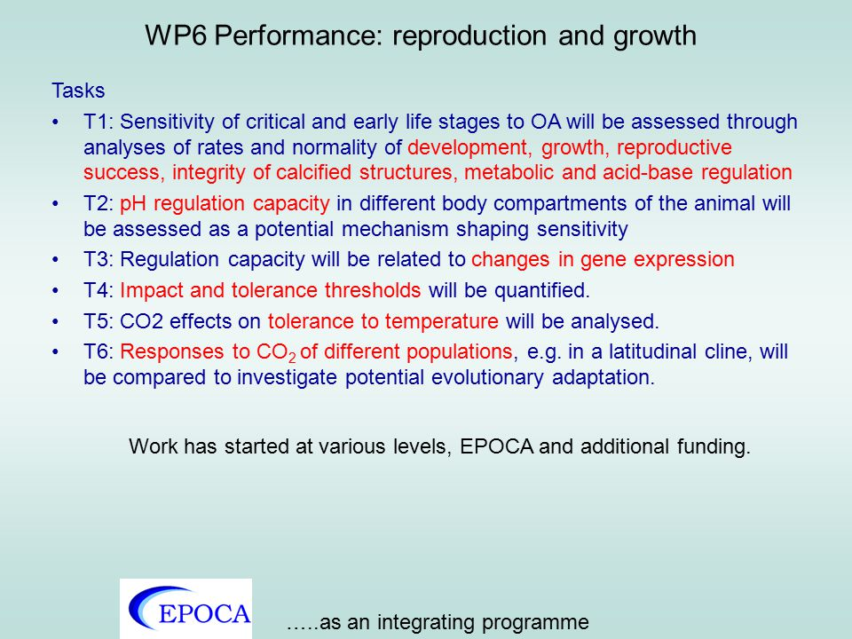 EPOCA WP 6 Experiments will be conducted with the Kiel CO 2 manipulation system and during the 2009 Arctic experiment to determine the impact of high CO 2 on fish and cephalopods eggs, larvae and juveniles.