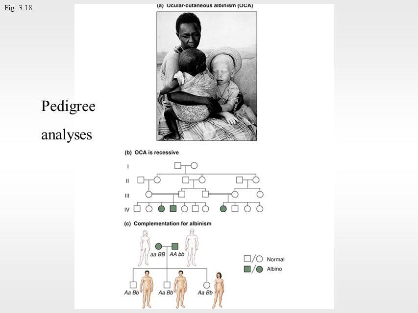 Fig. 3.18 Pedigree analyses