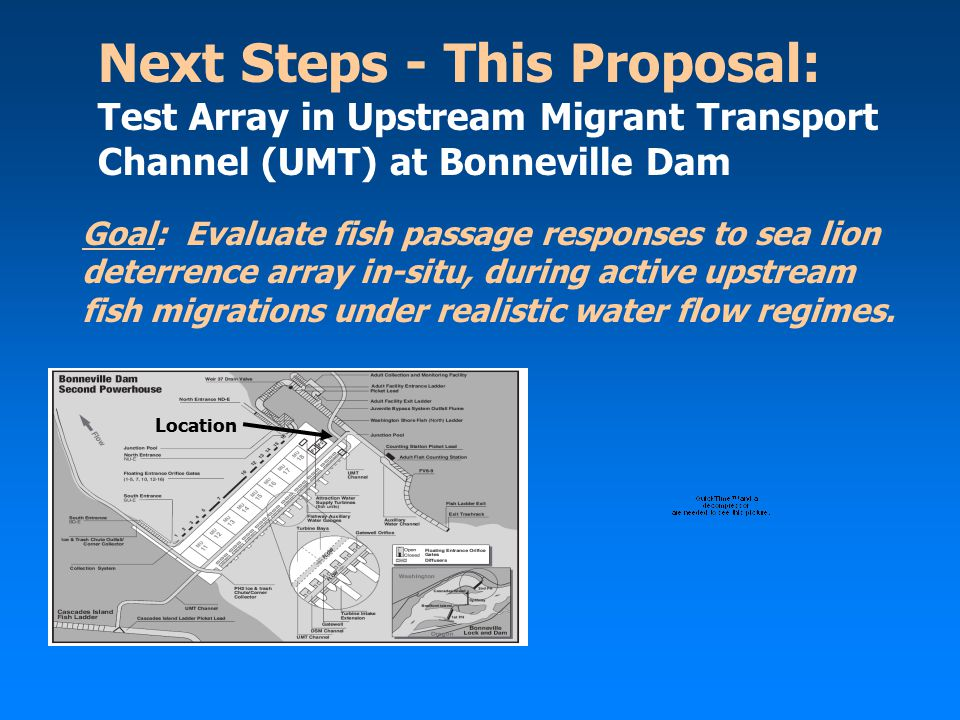 Next Steps - This Proposal: Test Array in Upstream Migrant Transport Channel (UMT) at Bonneville Dam Goal: Evaluate fish passage responses to sea lion