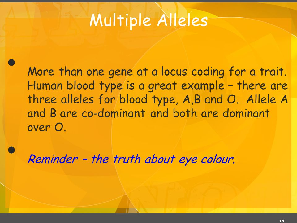 18 Multiple Alleles More than one gene at a locus coding for a trait. Human blood type is a great example – there are three alleles for blood type, A,