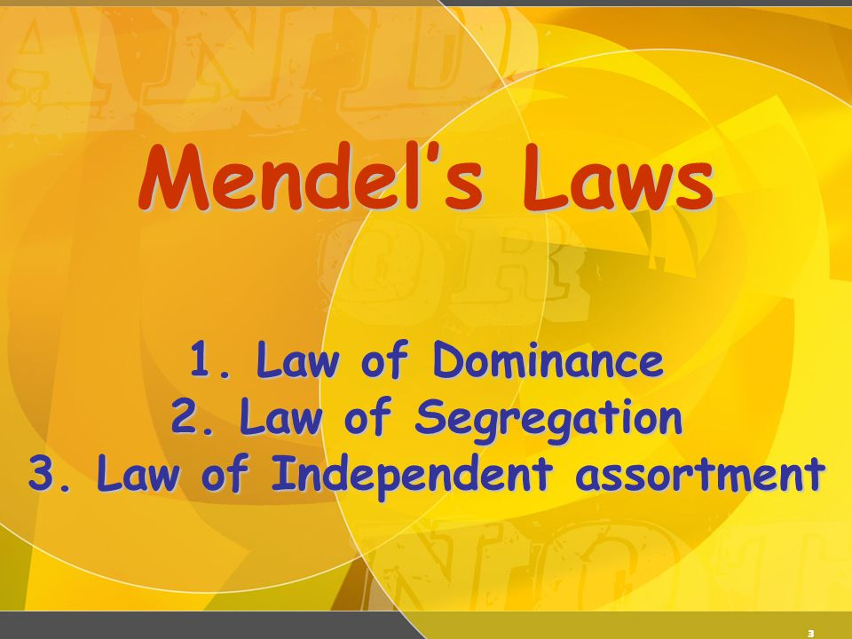 3 Mendel's Laws 1. Law of Dominance 2. Law of Segregation 3. Law of Independent assortment