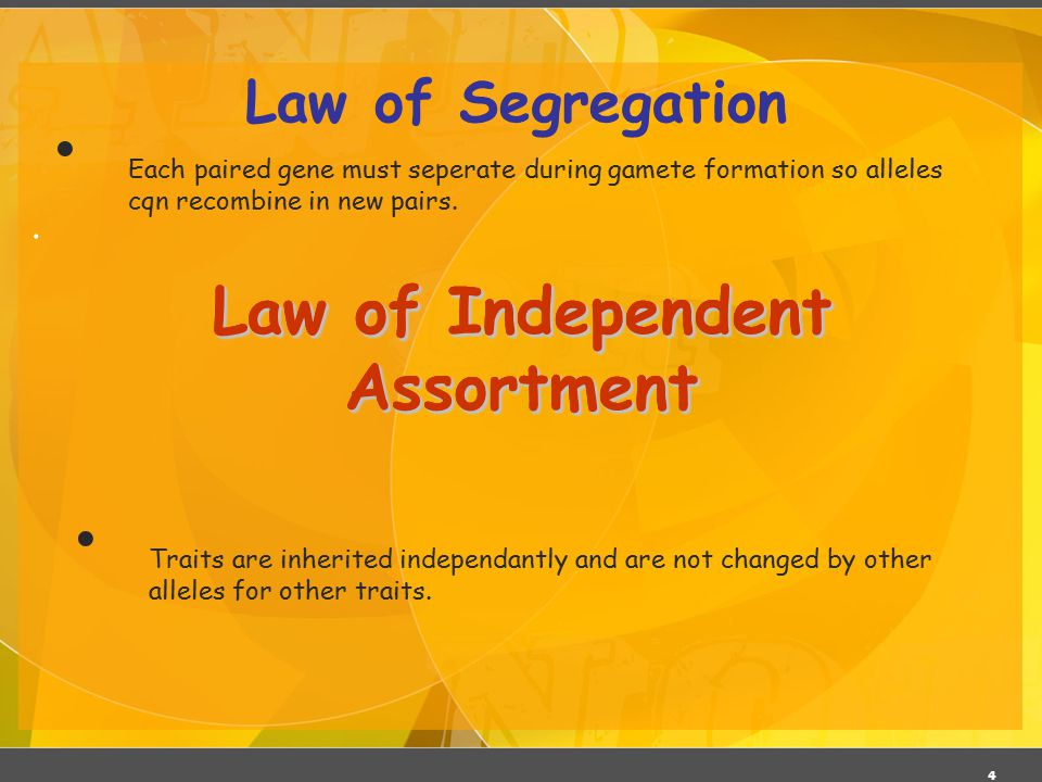 4. Law of Segregation Law of Independent Assortment Traits are inherited independantly and are not changed by other alleles for other traits. Each pai