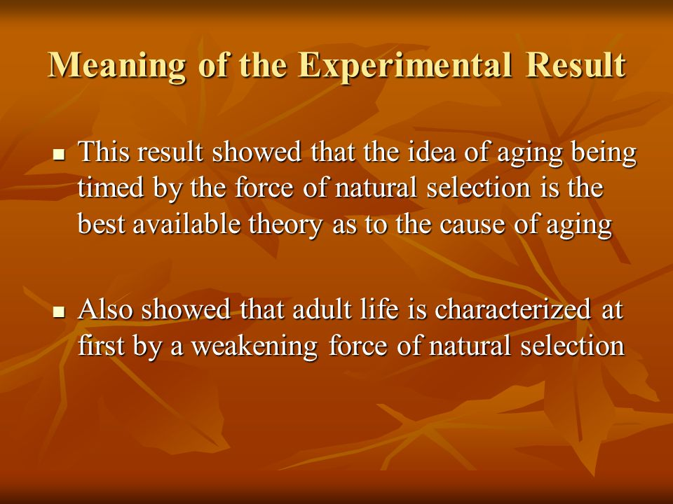 Meaning of the Experimental Result This result showed that the idea of aging being timed by the force of natural selection is the best available theory as to the cause of aging This result showed that the idea of aging being timed by the force of natural selection is the best available theory as to the cause of aging Also showed that adult life is characterized at first by a weakening force of natural selection Also showed that adult life is characterized at first by a weakening force of natural selection