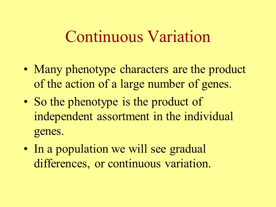 Continuous Variation Many phenotype characters are the product of the action of a large number of genes. So the phenotype is the product of independen