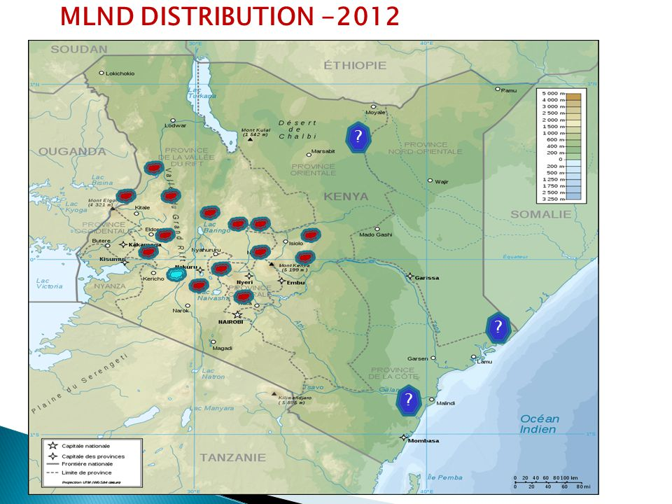 MLND DISTRIBUTION -2012