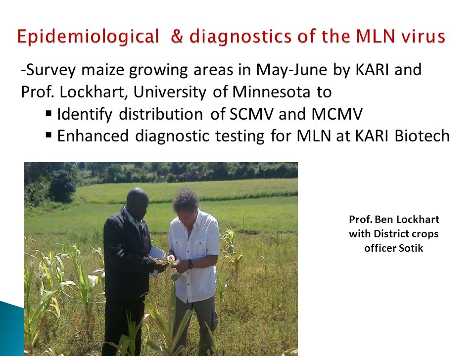 Prof. Ben Lockhart with District crops officer Sotik -Survey maize growing areas in May-June by KARI and Prof. Lockhart, University of Minnesota to 
