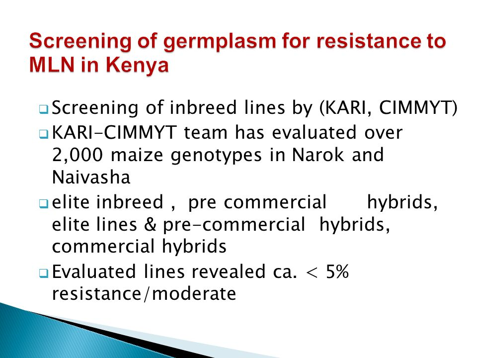  Screening of inbreed lines by (KARI, CIMMYT)  KARI-CIMMYT team has evaluated over 2,000 maize genotypes in Narok and Naivasha  elite inbreed, pre