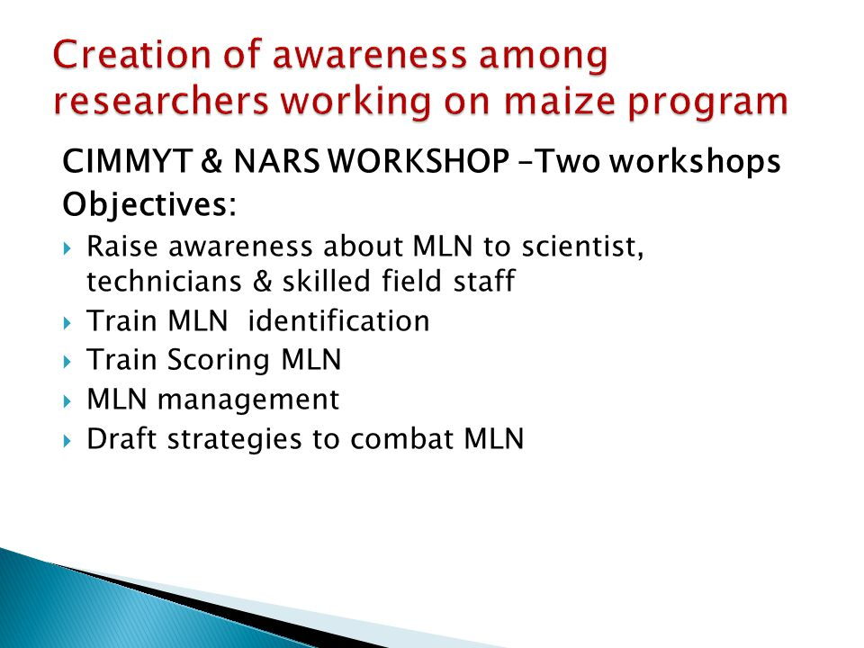CIMMYT & NARS WORKSHOP –Two workshops Objectives:  Raise awareness about MLN to scientist, technicians & skilled field staff  Train MLN identificati