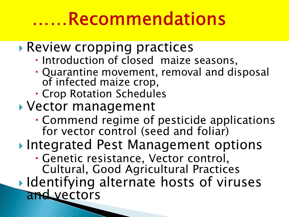  Review cropping practices  Introduction of closed maize seasons,  Quarantine movement, removal and disposal of infected maize crop,  Crop Rotation Schedules  Vector management  Commend regime of pesticide applications for vector control (seed and foliar)  Integrated Pest Management options  Genetic resistance, Vector control, Cultural, Good Agricultural Practices  Identifying alternate hosts of viruses and vectors ……Recommendations