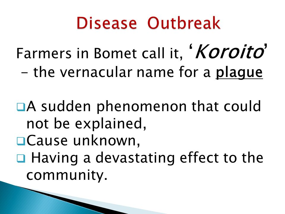 Farmers in Bomet call it, 'Koroito' - the vernacular name for a plague  A sudden phenomenon that could not be explained,  Cause unknown,  Having a