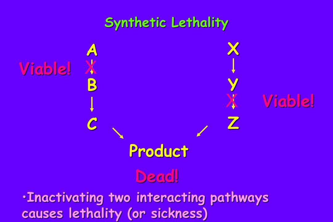 FORWARD Chemical Genetic Studies in Yeast 1.Screening the deletion set for drug sensitivities 2.