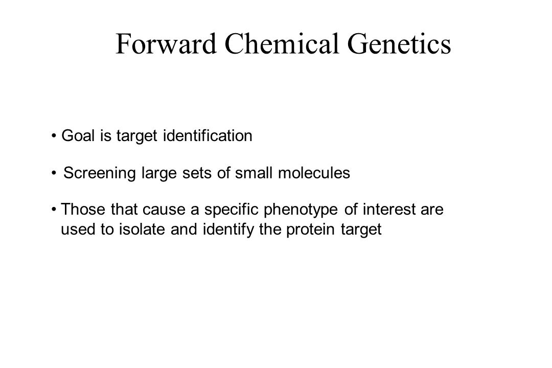 Forward Chemical Genetics Screening large sets of small molecules Goal is target identification Those that cause a specific phenotype of interest are