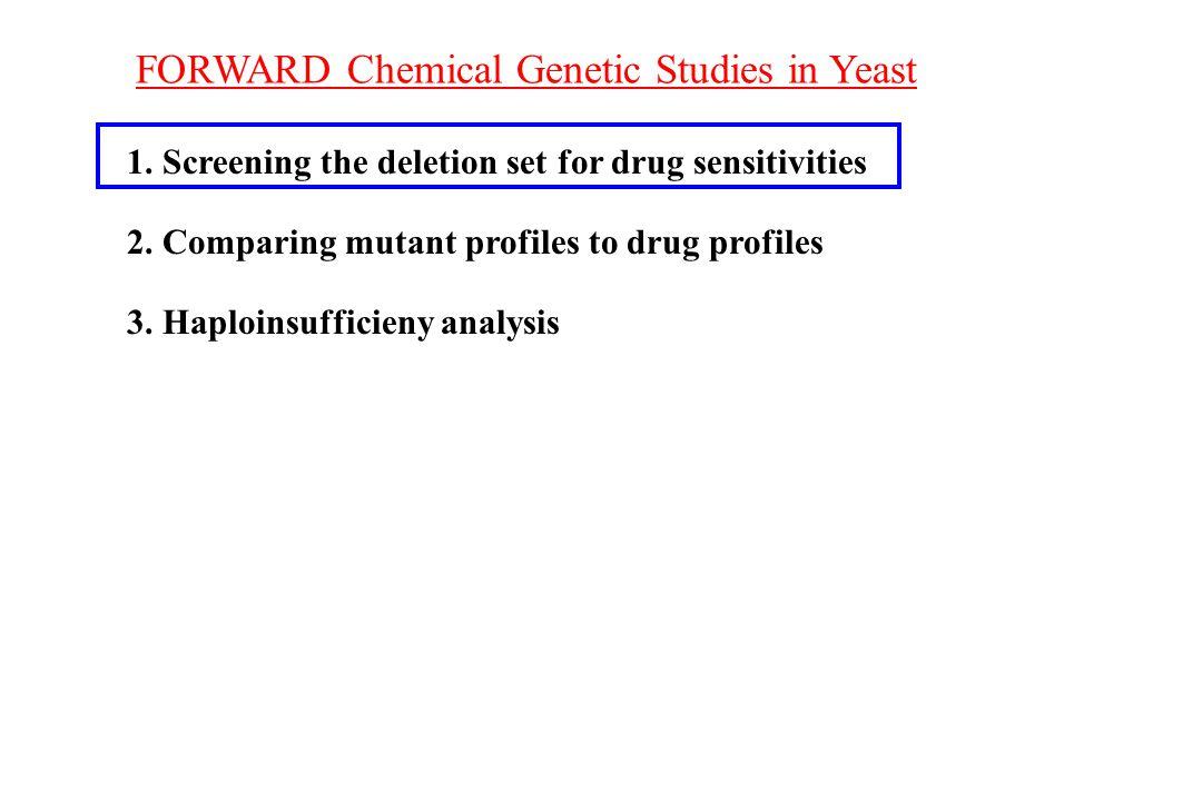 FORWARD Chemical Genetic Studies in Yeast 1. Screening the deletion set for drug sensitivities 2. Comparing mutant profiles to drug profiles 3. Haploi
