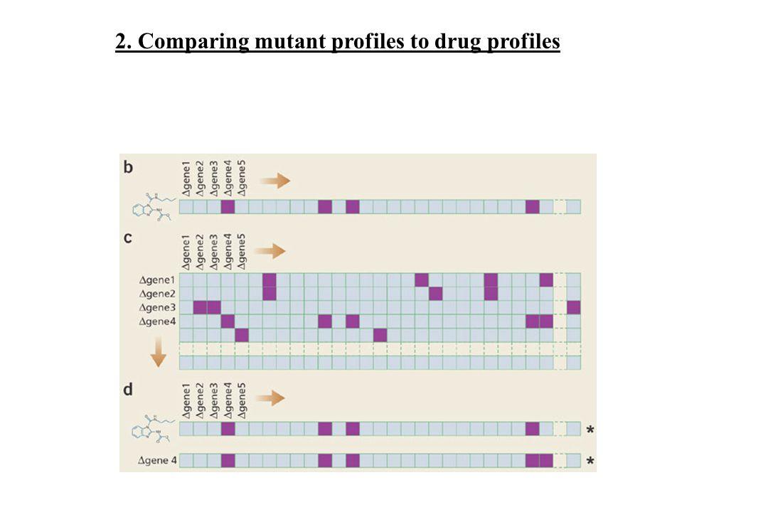 2. Comparing mutant profiles to drug profiles
