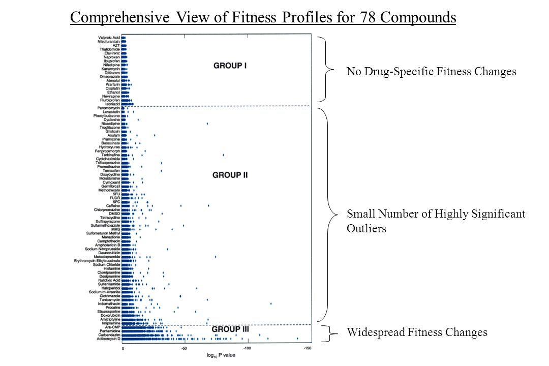 Comprehensive View of Fitness Profiles for 78 Compounds No Drug-Specific Fitness Changes Small Number of Highly Significant Outliers Widespread Fitnes