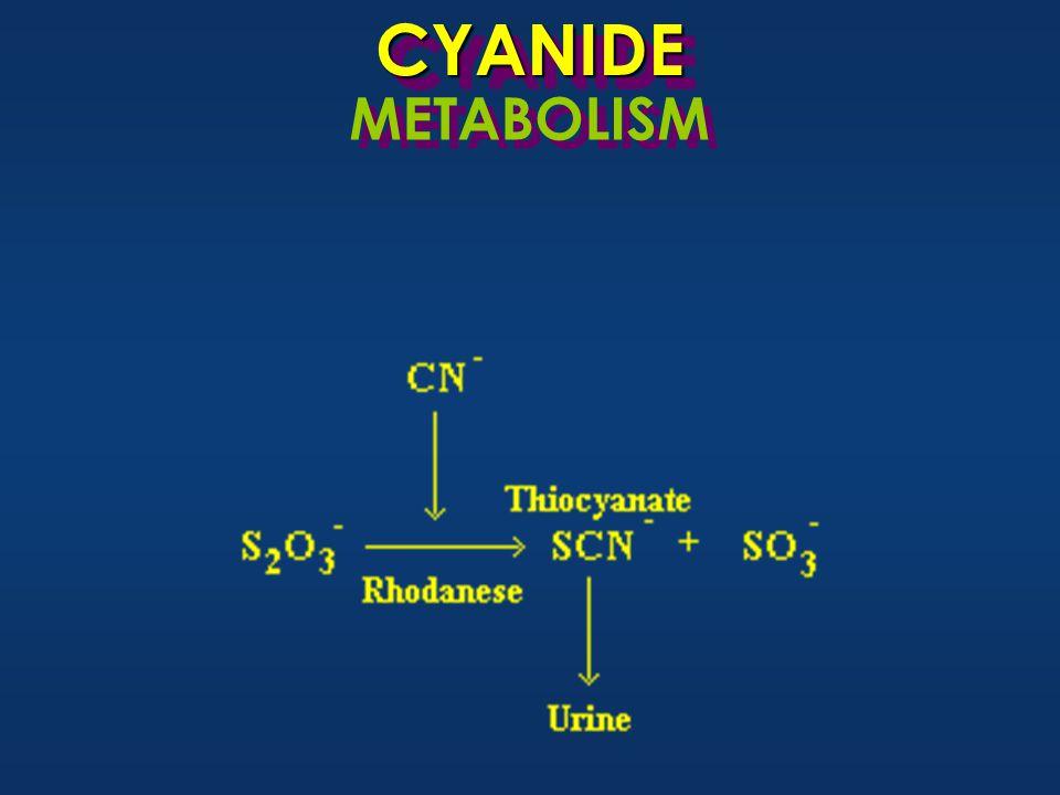 CYANIDECYANIDE METABOLISM