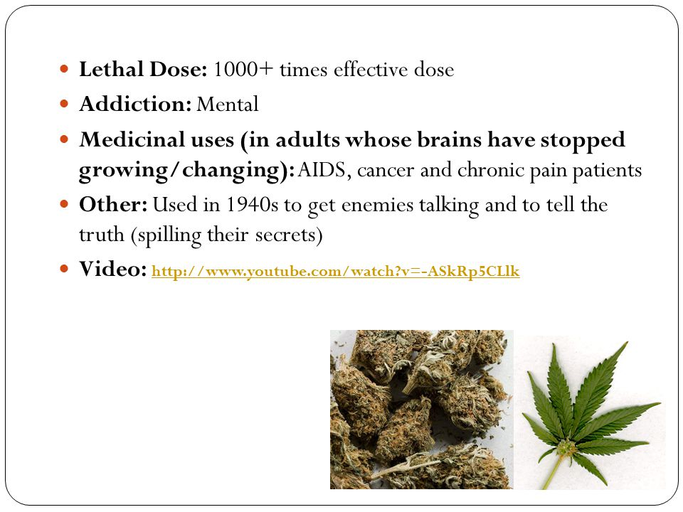 Lethal Dose: 1000+ times effective dose Addiction: Mental Medicinal uses (in adults whose brains have stopped growing/changing): AIDS, cancer and chro