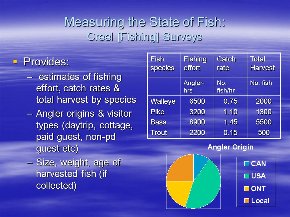 Measuring the State of Fish: Creel [Fishing] Surveys  Provides: – estimates of fishing effort, catch rates & total harvest by species –Angler origins & visitor types (daytrip, cottage, paid guest, non-pd guest etc) –Size, weight, age of harvested fish (if collected) Fish species Fishing effort Catch rate Total Harvest Angler- hrs No.