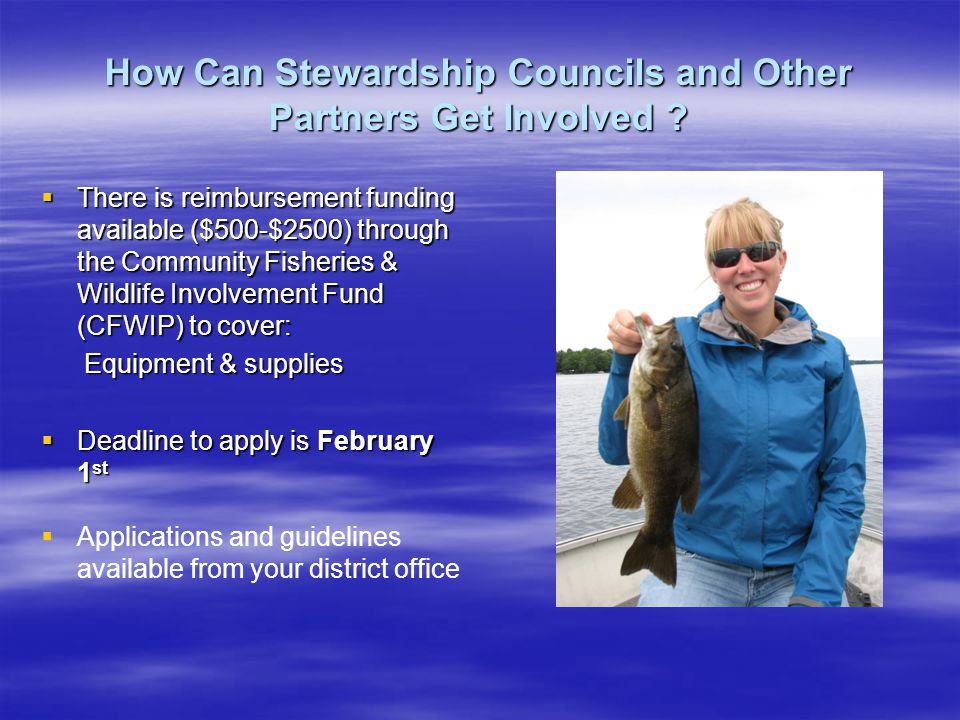 How Can Stewardship Councils and Other Partners Get Involved .