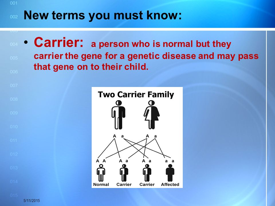 New terms you must know: Carrier: a person who is normal but they carrier the gene for a genetic disease and may pass that gene on to their child. 5/1