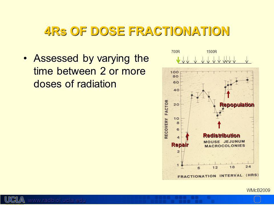 www.radbiol.ucla.edu WMcB2009 Isoeffect Curves Withers et al Radiat Res 119:395, 1989 D= NSD x N 0.24