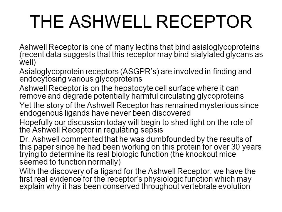 THE ASHWELL RECEPTOR Ashwell Receptor is one of many lectins that bind asialoglycoproteins (recent data suggests that this receptor may bind sialylated glycans as well) Asialoglycoprotein receptors (ASGPR's) are involved in finding and endocytosing various glycoproteins Ashwell Receptor is on the hepatocyte cell surface where it can remove and degrade potentially harmful circulating glycoproteins Yet the story of the Ashwell Receptor has remained mysterious since endogenous ligands have never been discovered Hopefully our discussion today will begin to shed light on the role of the Ashwell Receptor in regulating sepsis Dr.