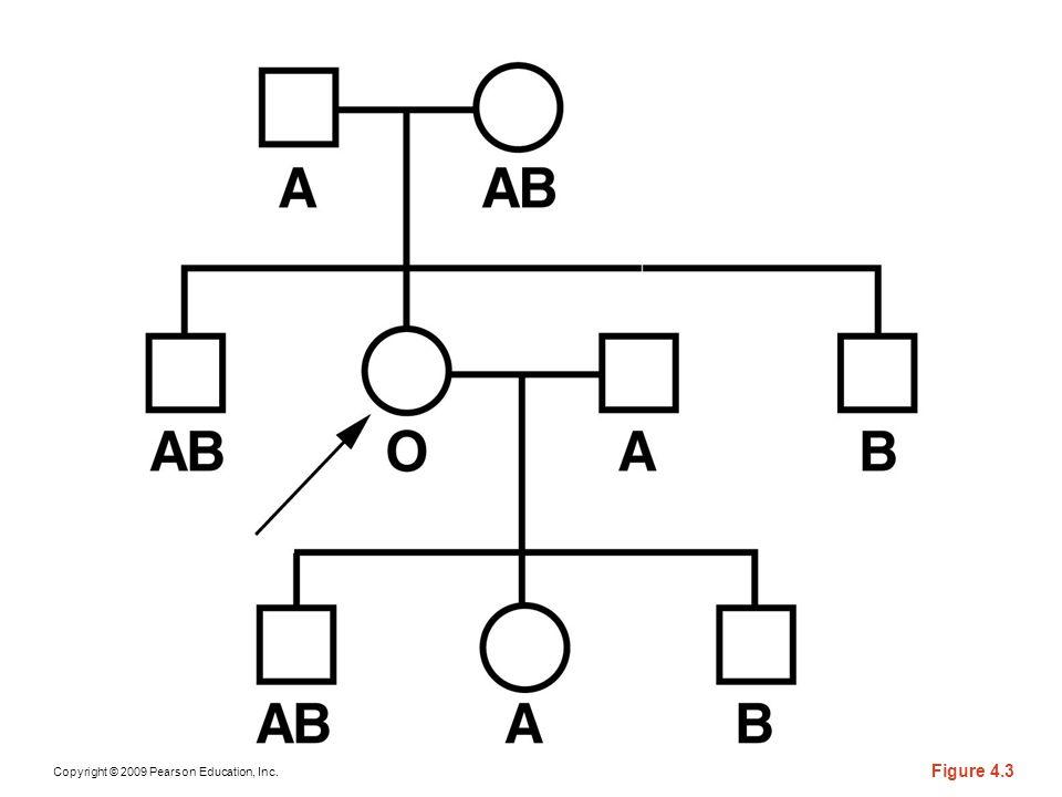 Copyright © 2009 Pearson Education, Inc. Figure 4.3