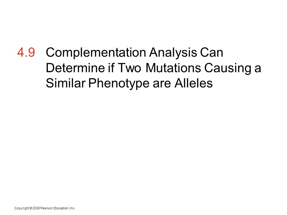 Copyright © 2009 Pearson Education, Inc. 4.9Complementation Analysis Can Determine if Two Mutations Causing a Similar Phenotype are Alleles