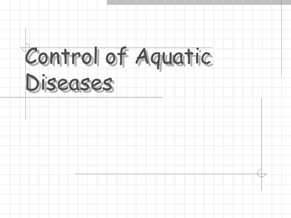 6) External Treatments Controls pathogenic agents of fish/water Requires immersion Chemical effective but at lower-than-lethal level (e.g., chlorine not good for this use) Miscible in water Resist absorption by fish Usable for multiple treatments Cheap What fits THIS category?