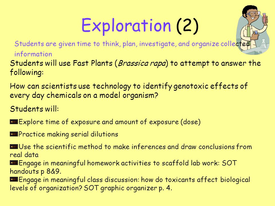 Exploration (2) Students are given time to think, plan, investigate, and organize collected information Students will use Fast Plants (Brassica rapa) to attempt to answer the following: How can scientists use technology to identify genotoxic effects of every day chemicals on a model organism.