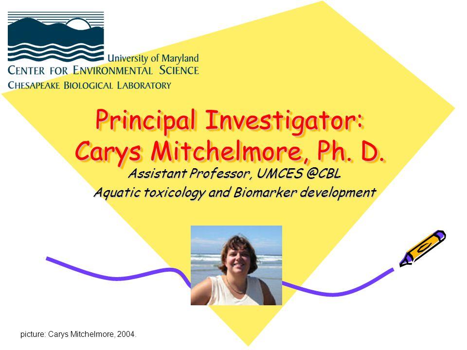 Principal Investigator: Carys Mitchelmore, Ph.D.